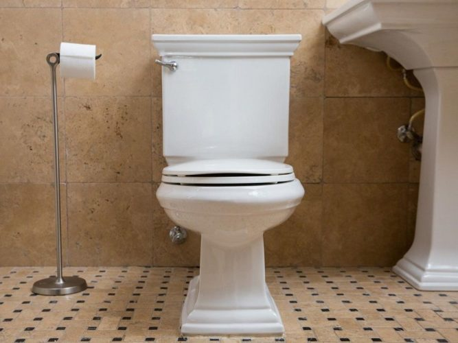 toilets cause hemorrhoids