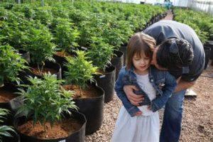 Marijuana Cures this 6 Year Old Girl's 300 Seizures a Week