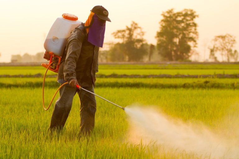 Farmer spraying roundup herbicide