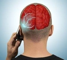 cellphones causing brain damage in rats endalldisease