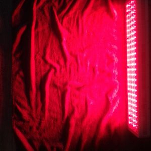 Red light therapy bodylight 3