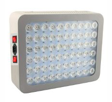 red light therapy bodylight mini