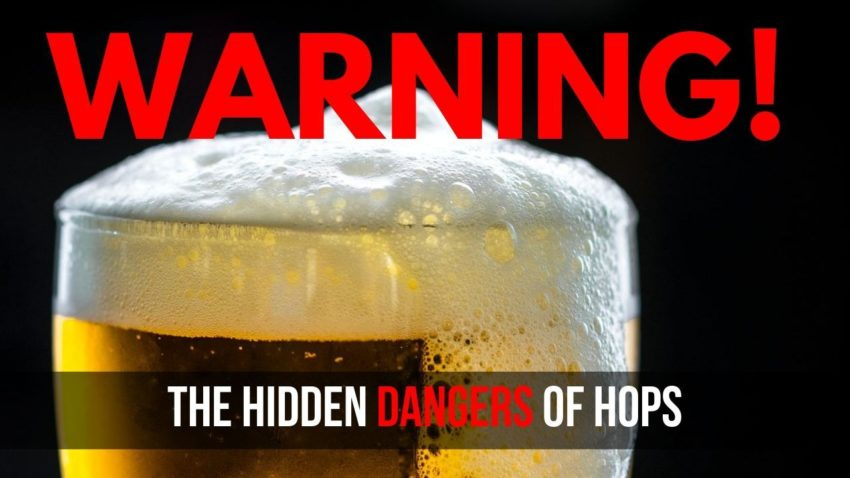The Hidden Dangers of Hops in Beer